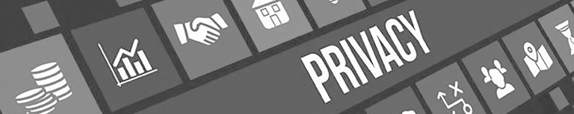 banner - privacy